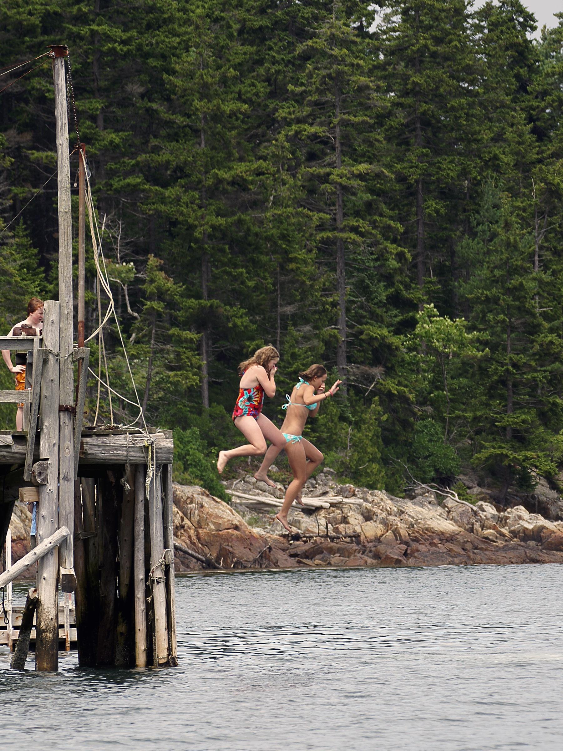 Hiram Blake Camp, Harborside, Maine   The plunge