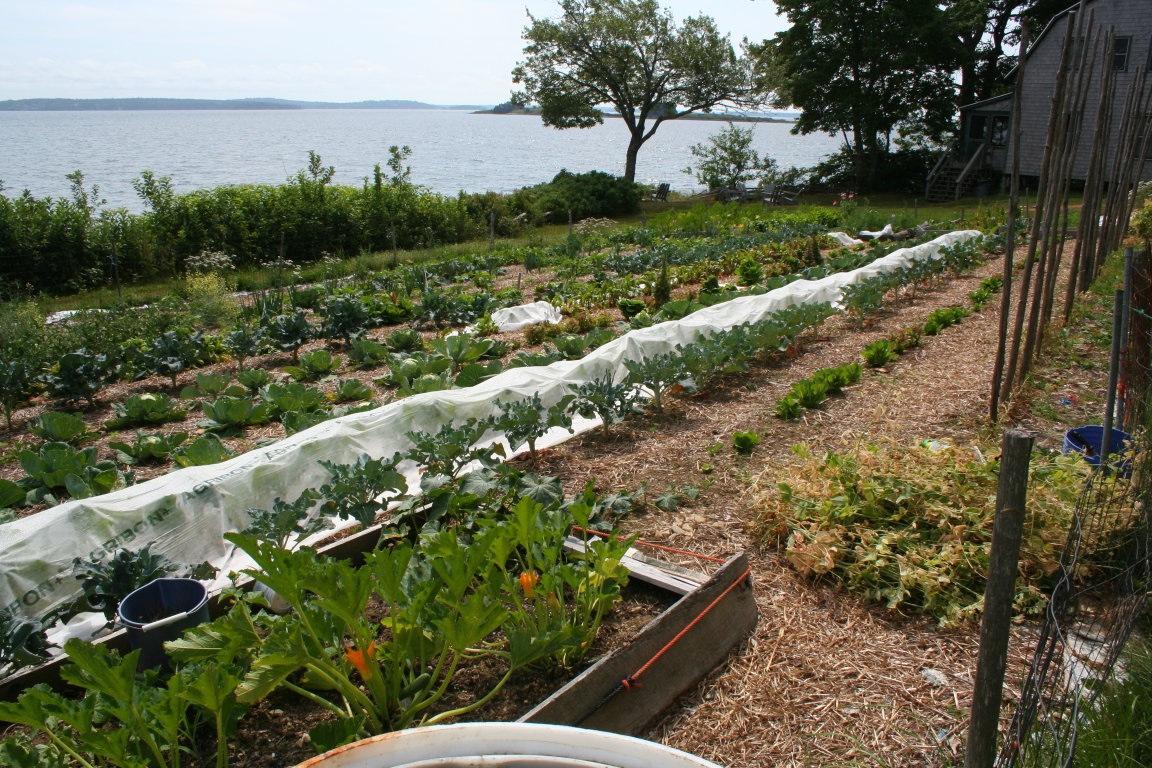 Hiram Blake Camp, Harborside, Maine | Gardens